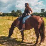 Mijn paard heeft er nog nooit zo goed uitgezien als nu!